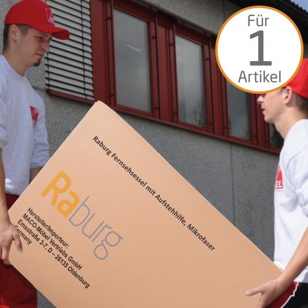 raburg-de-gel-dou-maenner-tragen-schweres-paket-in-die-wohnung